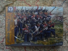 Waterloo 1815 AP008 Polish Infantry 1812- 1814