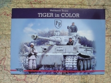 TC.83-60041-16-4  TIGER IN COLOR